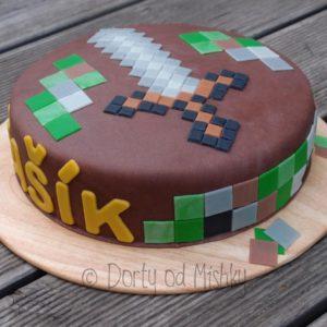 Minecraft dort