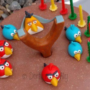 Angry birds, pohled do praku